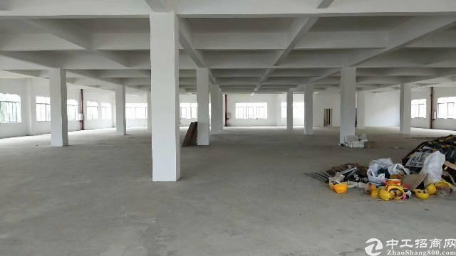 仲恺高新区独院厂房出租,现成办公室
