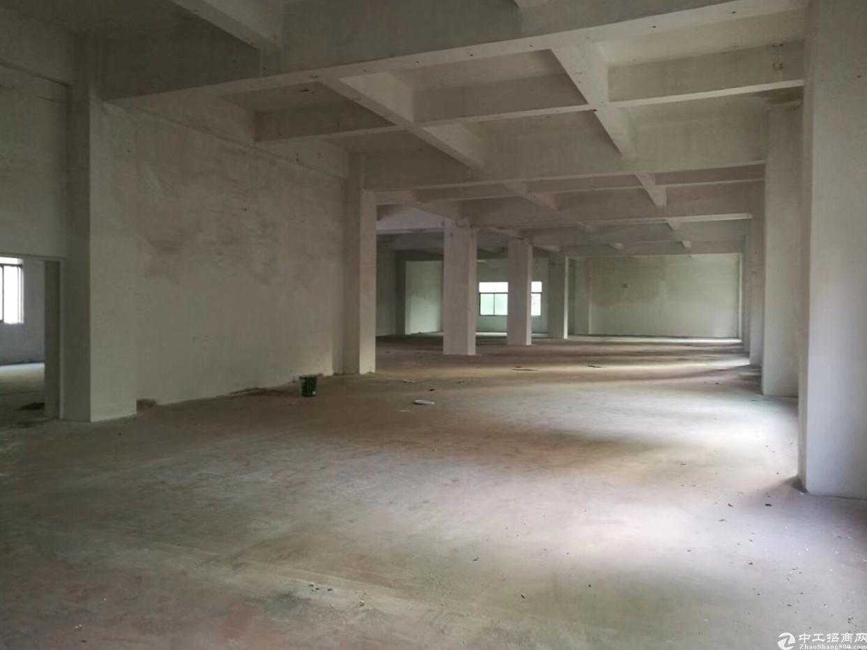 西乡桃源居附近新出的1200平厂房出租