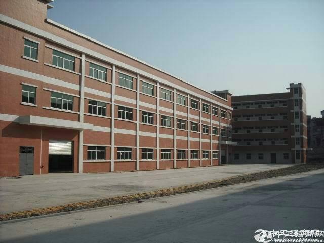 陈江镇厂房出租1100平方原房东标准厂房13块钱