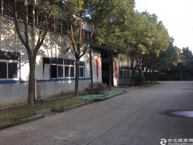 武汉市东西湖区单一层厂房低价出租