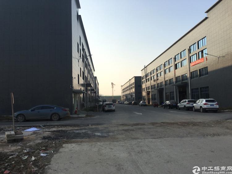 东西湖全新生产型厂房1200平出租-图2