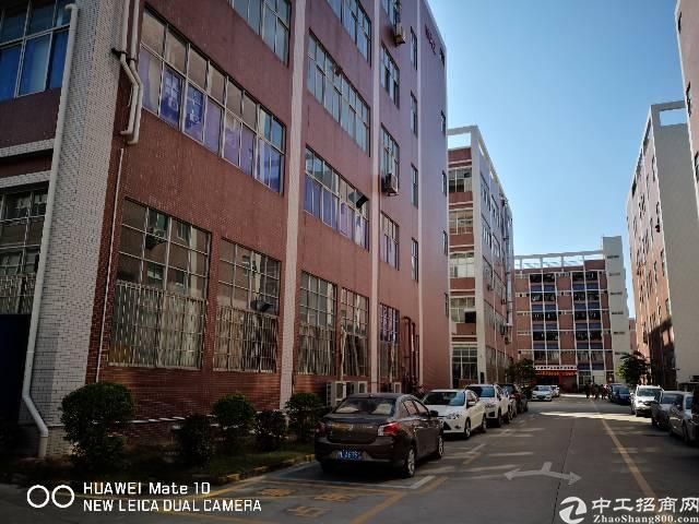 免中介费!石岩龙大高速口红本厂房4-5楼2层5000㎡带喷淋