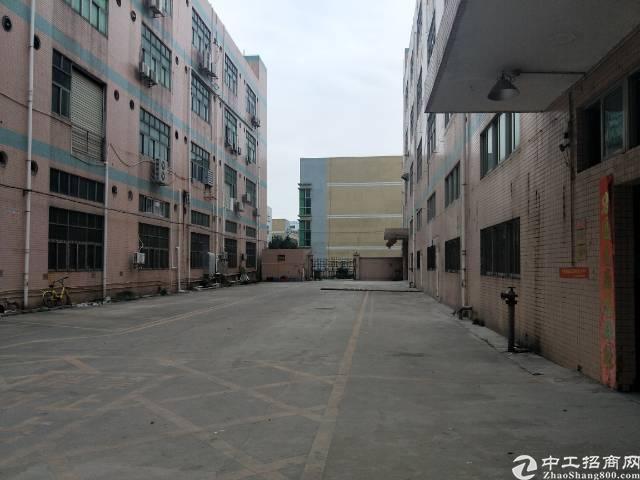 福永和平大型工业园新出整栋厂房出租