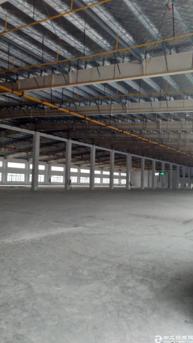 东西湖区单一层钢构库房分租-图3