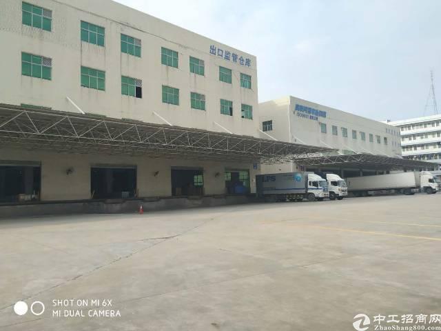 卸货平台长安仓库贸易类厂房6000平可分租