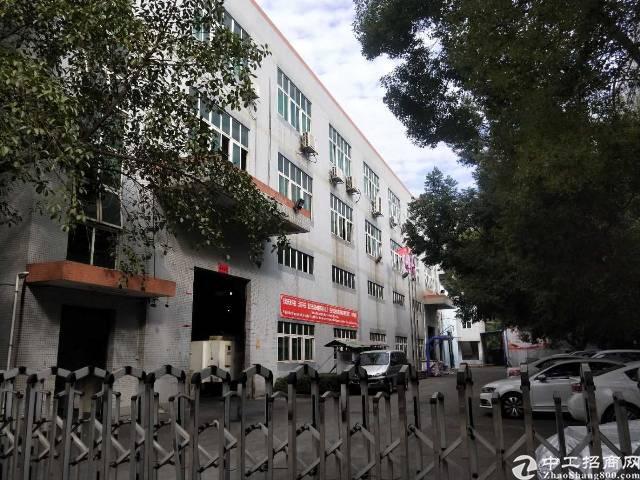 沙井黄埔路107国道边一楼带20吨行车招租