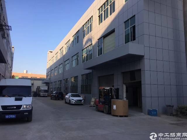 公明原房东独门独院厂房6600平方无公摊出租