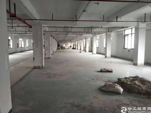 银田工业区1800平厂房特价25