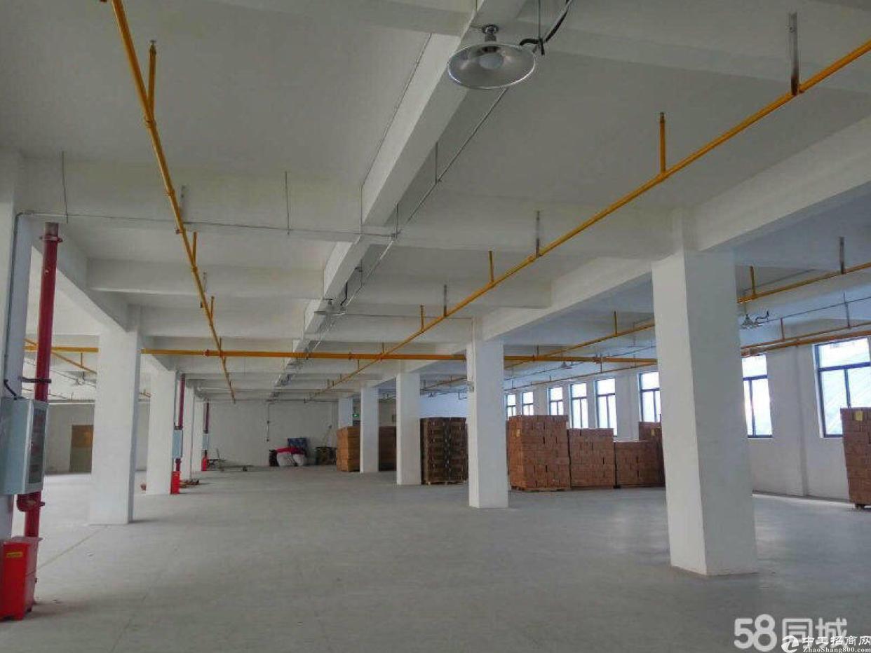 阳逻钢构一体标准厂房