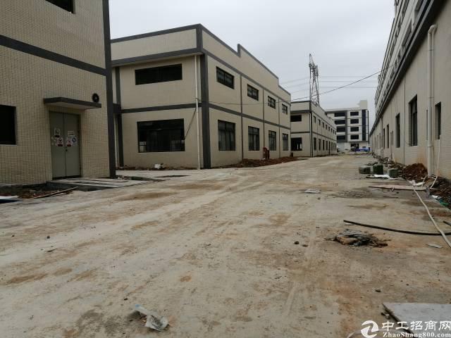 惠东县白花成熟工业园独院钢构厂房14500平方
