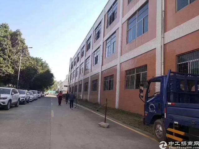 光明新区红星标准厂房独门独院招租