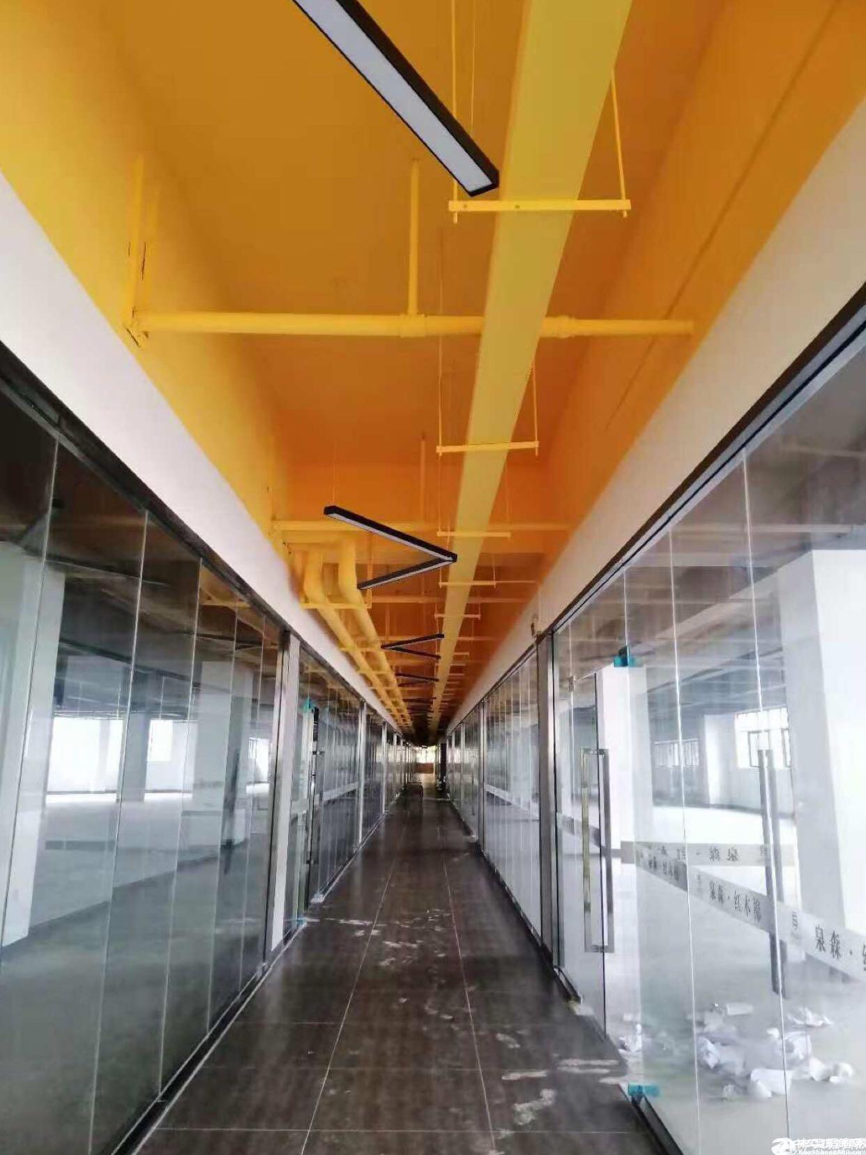 布吉双地铁站高绿化红本全新改造78平方起租