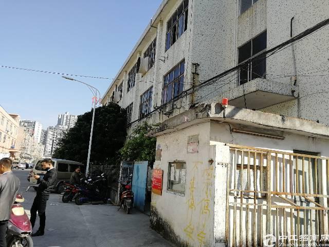 沙井宝安大道旁新出2楼1100平方,租金21元每平方,精装修