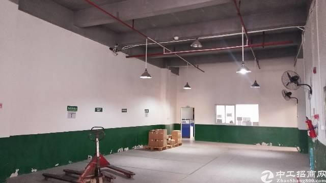 惠阳秋长维布工业园一楼厂房招租1F1300平米,电200,
