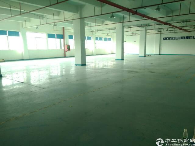 龙岗坪地新出标准厂房一楼2000平方出租