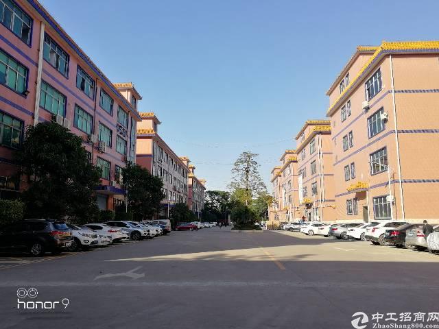 福永凤凰欧式风格大型园区三楼1380平方带装修水电齐全