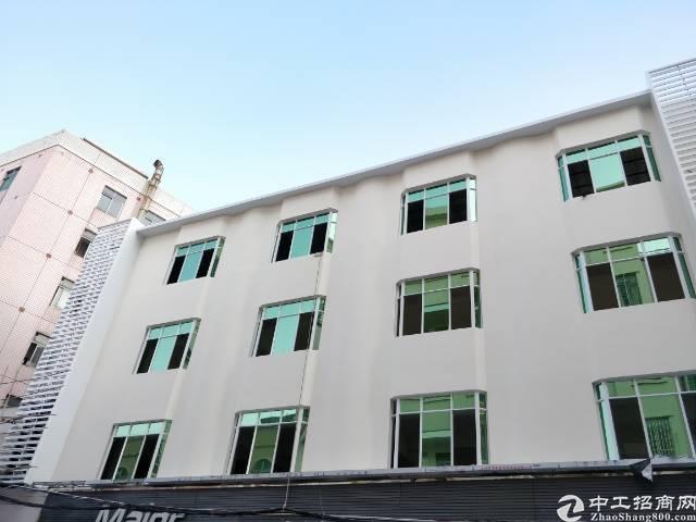 厚街明丰广场旁80-550m²写字楼出租