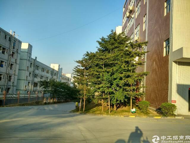 石岩大型园区整层带红本精装修2550平米厂房出租