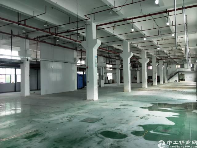 沙井北环路大型工业园一楼2000平方厂房出租