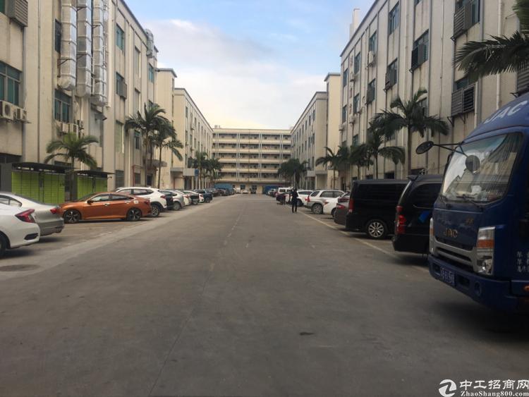 光明新区龙大高速出口新出6米高一楼1200平带办公室装修