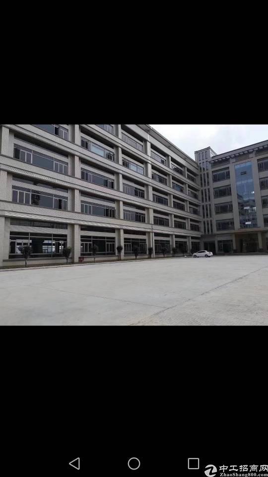 惠城区小金口标准厂房按建筑成本出售出售。