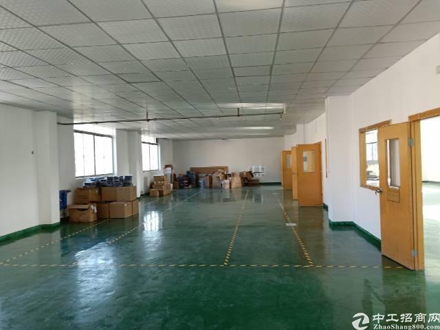 公明蒋石松白路边新出独门独院厂房4400平方租金25元-图8