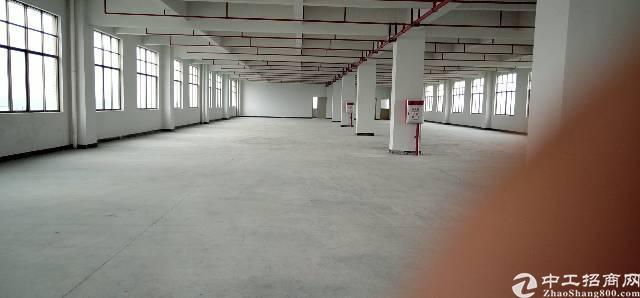 东坑、新出全新标准厂房招租