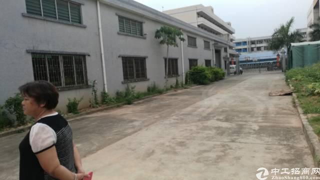 茶山镇新出独院单层1200平方厂房招租