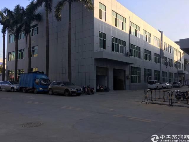 公明原房东独门独院厂房6600平方无公摊出租-图3