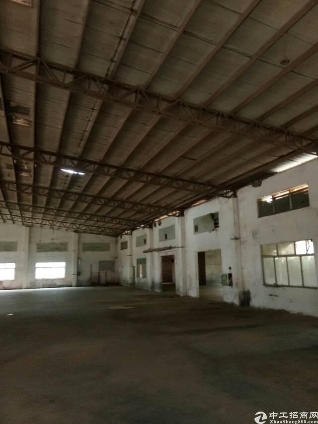 清溪大利新出敢12米钢构厂房15000㎡出租-图3