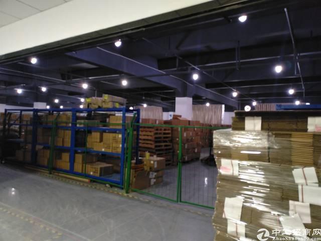 龙华大浪商业中心新出物流仓储出租4000平