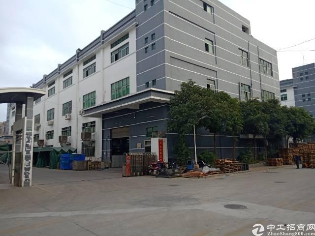 沙井黄埔107国道附近新出村委带精装修厂房400平