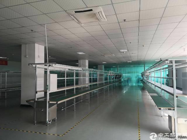 塘厦大坪高速口500米新出楼上精装修1400㎡水电齐全形象好-图4