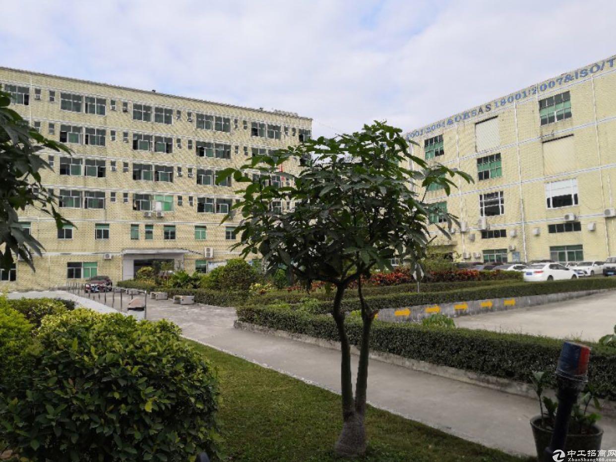 石岩红本独门独院16000平米花园式厂房出租