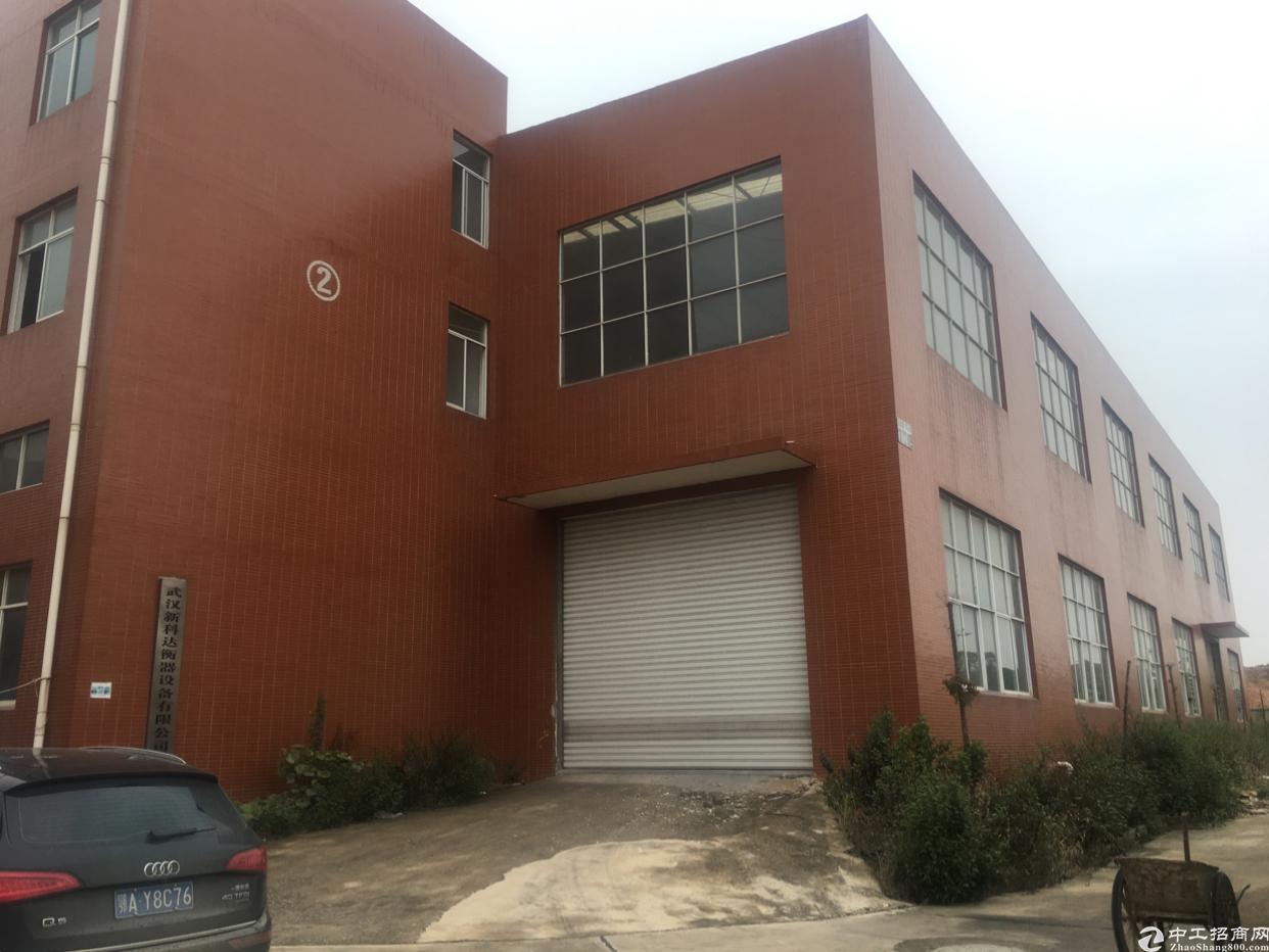 阳逻钢构标准厂房