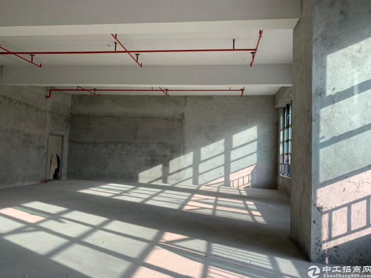 松岗汽车站附近全新红本写字楼50年产权出售独立红本可按揭首付