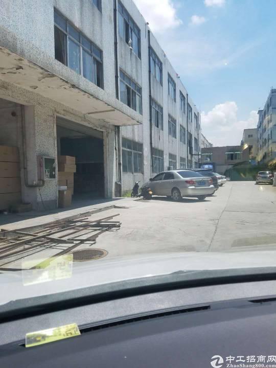 沙井庄村一楼六米高3500平方招租可分租