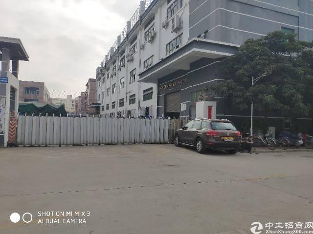沙井新桥107国道边精装修一楼七米高2000平方带消防喷淋