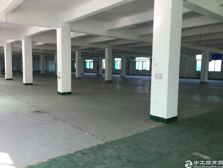 沙井共和樓上厂房