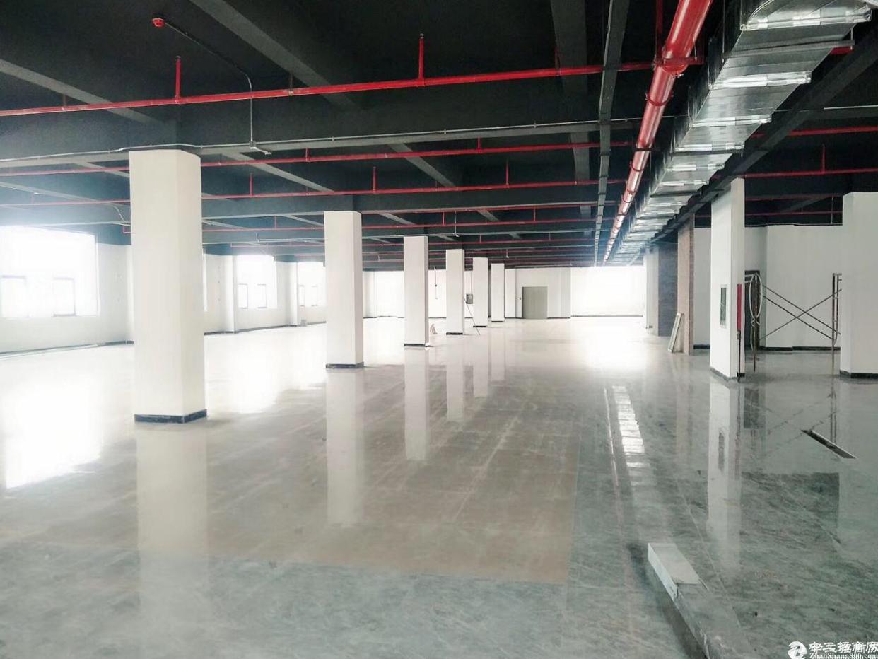 坂田杨美地铁站附近厂房电商园出租,面积168到2000平.