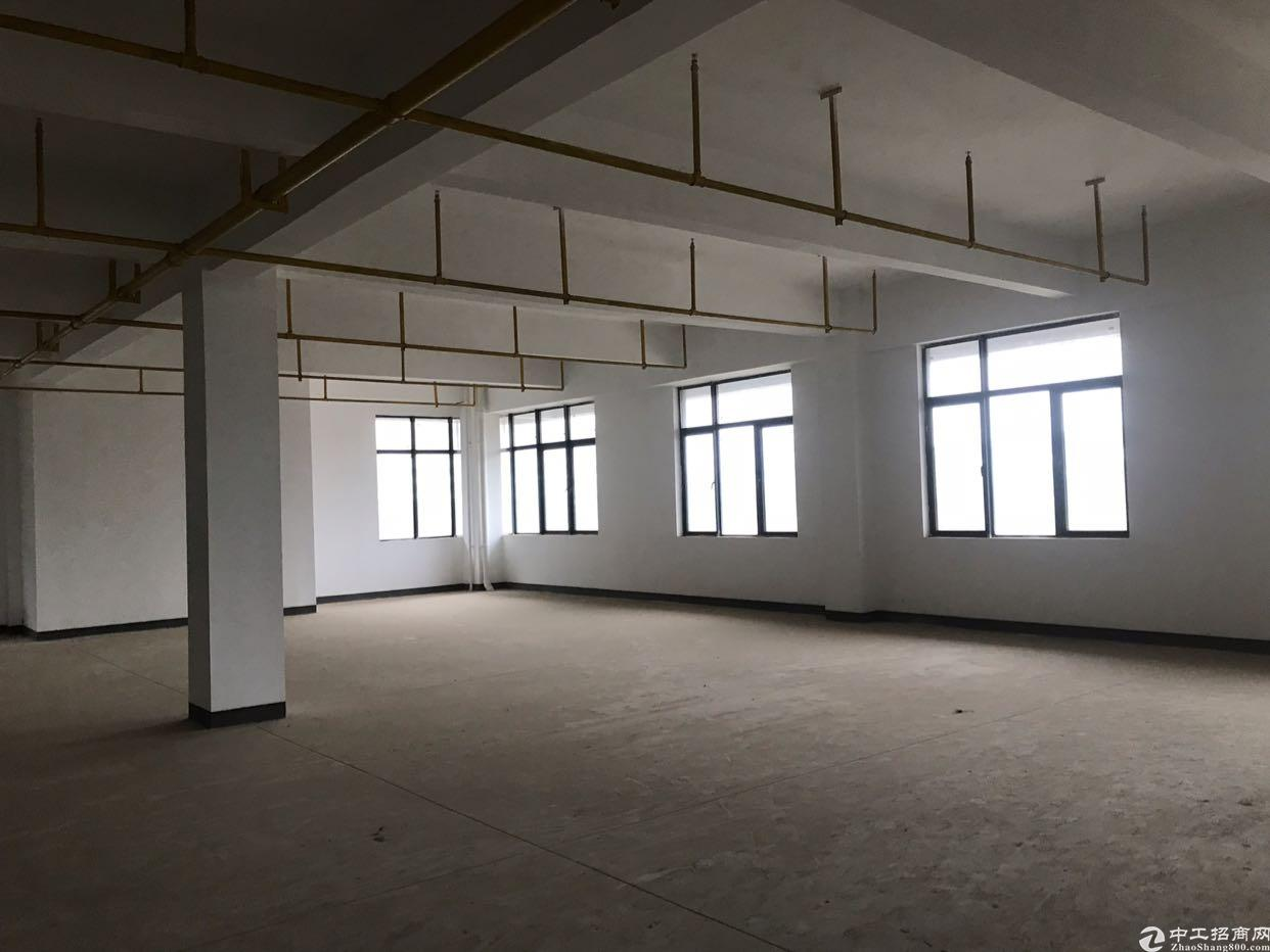 东湖高新区新建研发楼盛大招商