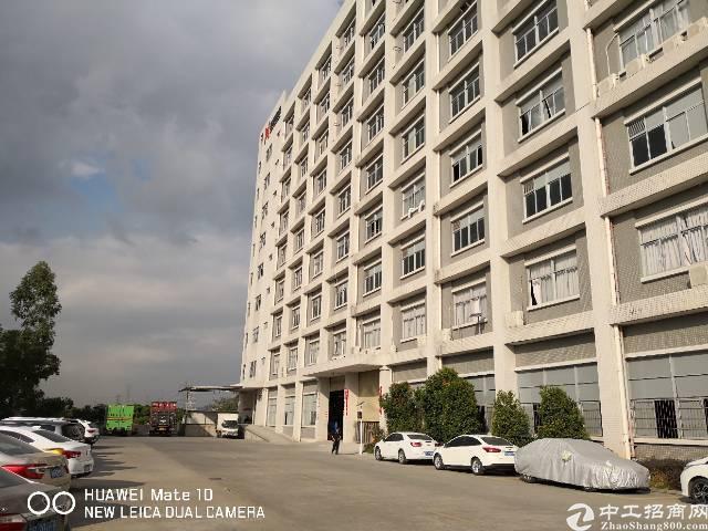石岩机荷高速口新出厂房2层共6600平方带卸货平台带喷淋