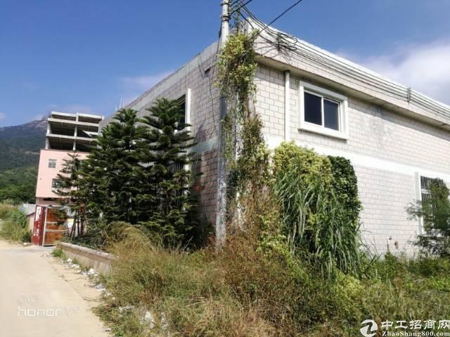 镇隆镇占地2000㎡建筑4000㎡村委合同厂房出售 M1H2