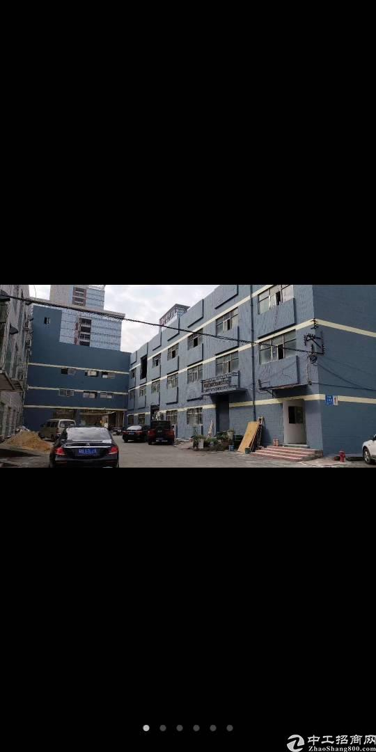 布吉李朗工业新出楼上770平18块每平方厂房出租