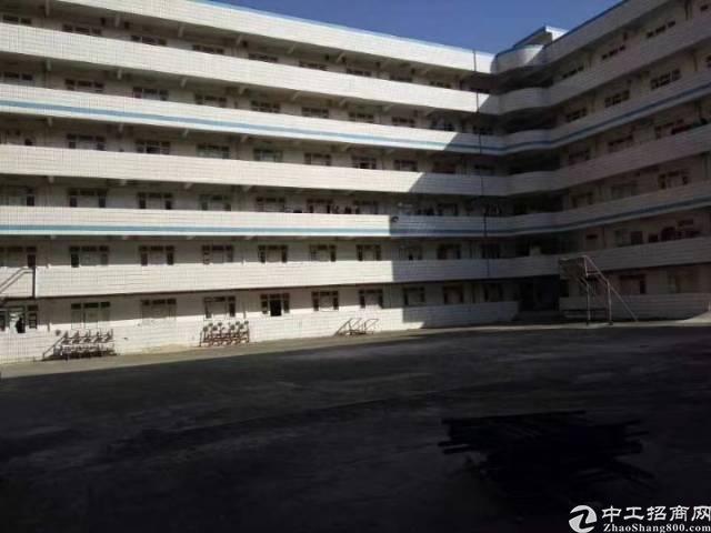 独院,公寓,学校,培训7000平出租