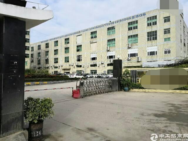 石岩双高速口红本独院厂房16000平方,宿舍7000平方