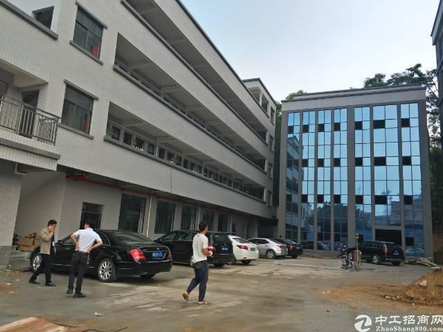 企石镇中心独院标准厂房1-6层9000平方