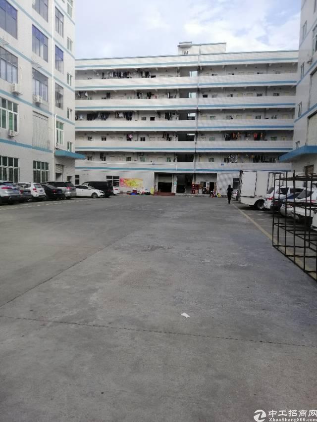 龙岗区宝龙工业区新出厂房一楼600平厂房出租