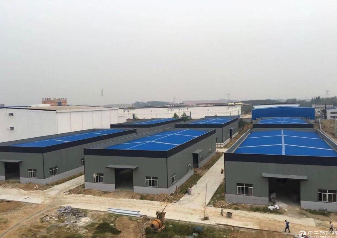 汉口北红安食品产业园,钢结构厂房出售,带燃气!