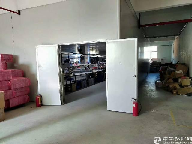 西乡簕竹角,楼上新出厂房1350平,带装修,无需转让费-图4